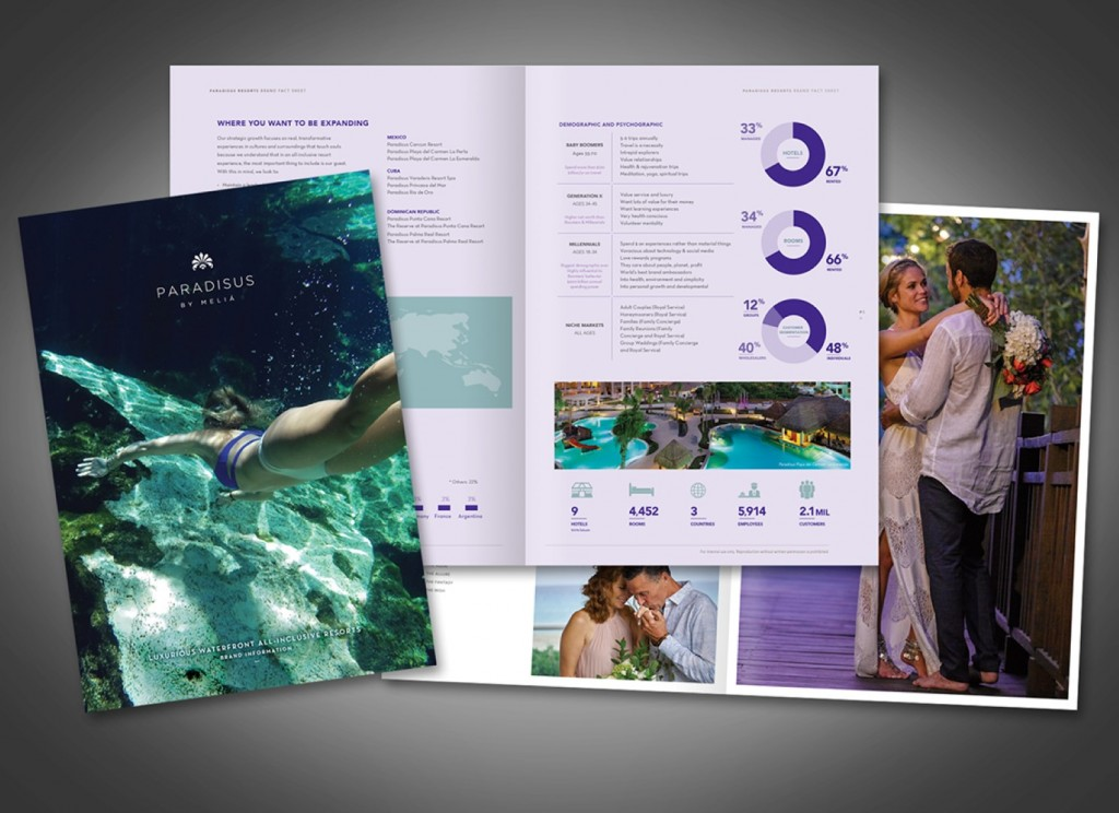 33Dev Brochure Composed